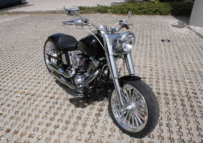 harley davidson fat boy ricks